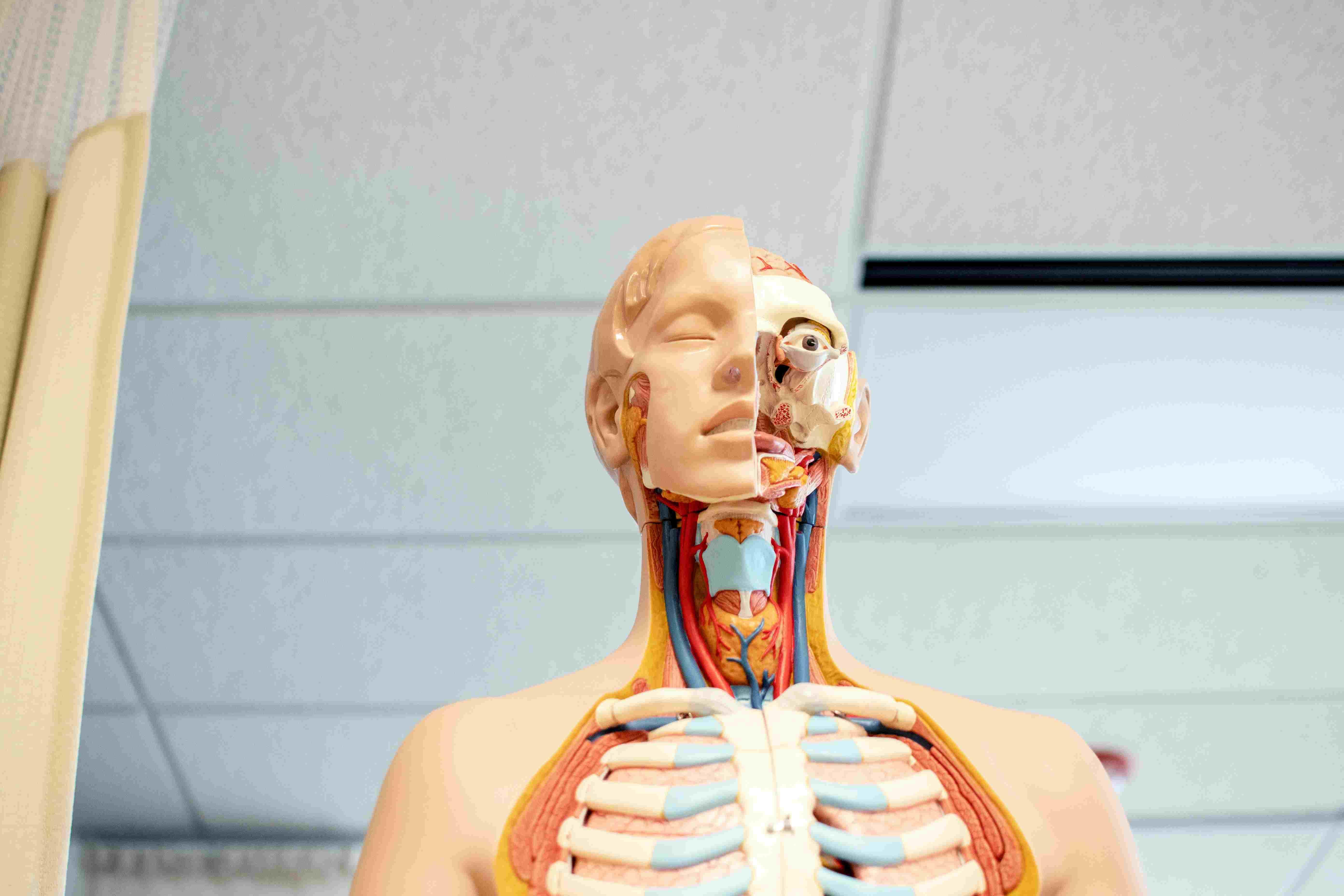 Emerging Career opportunities in Biology